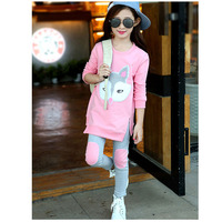 The Girl S Clothes Set 2016 Spring And Autumn Children Warm Suit 2 6 Year Old