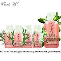 100% Pure Plant Essential Oil Pine Needles / Eucalyptus / Rosemary / Neroli / Jojoba Oil 10ml Antibacterial Improve Bronchial