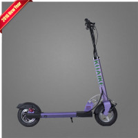 Foldable Electirc Scooter 10 Inch Folding Bike Electric Skateboard Hoverboard E Scooter