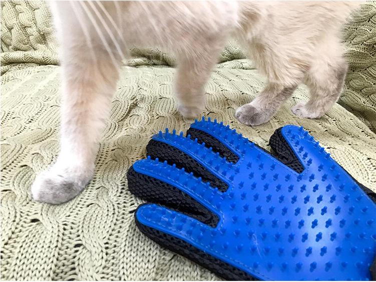 dog glove (3)