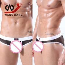 Transparent Mens Sexy Gay Underwear Breathable Nylon Briefs Slip Underwear Men Ropa Interior H...