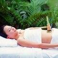 Caja de moxa moxibustión moxa quemador calabaza Ombligo Ajenjo masaje spa Portátil