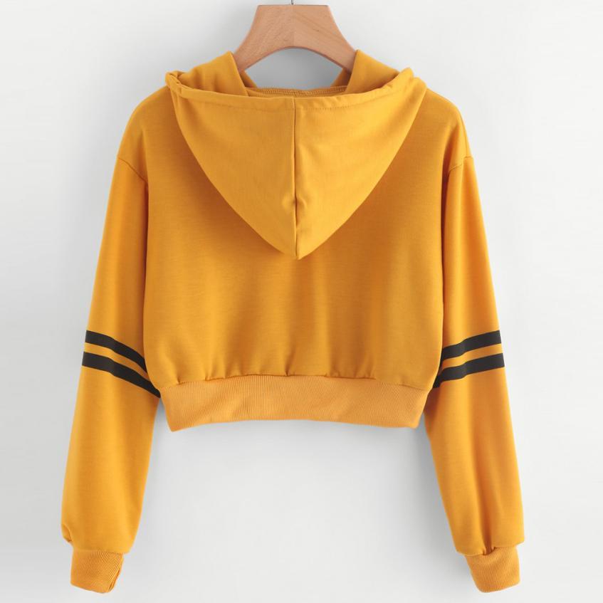 337c66256f0759 Women Varsity-Striped Drawstring Crop Hoodie Sweatshirt Jumper Crop Pullover  Topsdropshipped product