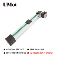 High Load Free Shipping 100 2000mm Stroke CNC Belt Driven Linear Module Slide Rail Actuator With Motor 0.1mm Accurancy