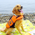 Hot Sell Dog Life Jacket Clothes Coat Training Yellow Pet Product Puppy Cat Life Vest All Size 3 Sizes- Dog Swimming Vest