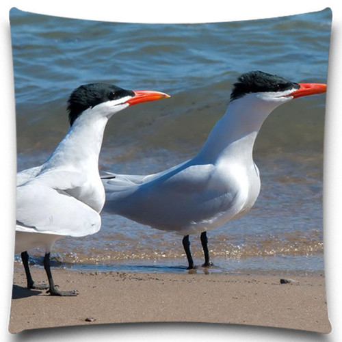 <font><b>Seabirds</b></font> Walking on the beach 2D print creative Pillow <font><b>case</b></font> Square cotton polyester cushion cover 5 size 9 style image