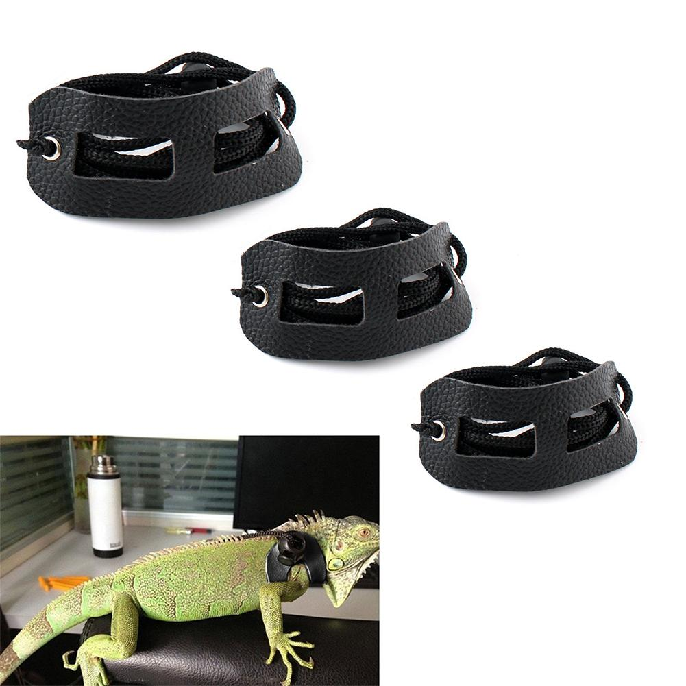 Lizards Iguana Reptiles Traction Rope Pet Outdoor Carrying Walking Harness Leather Traction Rope For Small Pet