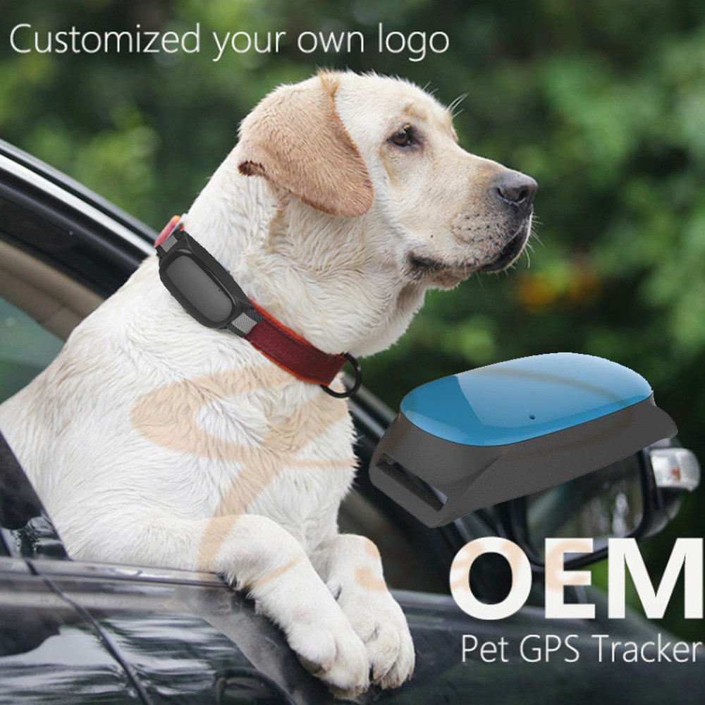 waterproof Smart Cats dogs GPS Tracking device Real Time Waterproof Pet Dog collars gps tracker free platform service four band 850 900 1800 1900mhz mini gps dog tracker waterproof with mobile phone track pets dogs kids