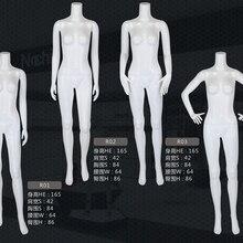 Стиль Манекен без головы женская модель модный стиль Сделано в Китае