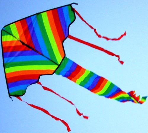 "Skyking 38"" ECOLINE RAINBOW Single-line Kite, SIMPLE FLYER, New Design 2013"