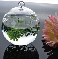 2pcs Lot Transparent Glass Crystal Hanging Plant Flower Vase Hydroponic Container Pot Home Wedding Office Decor