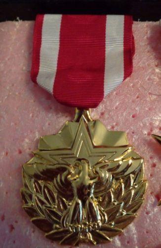 služba medaile velkoobchod nás národní služba medaile levné usa medaile medaile císařská služba medaile