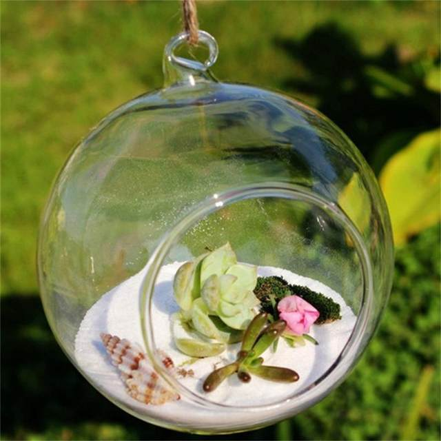 Online Shop Terrarium Ball Globe Shape Clear Hanging Gl Vase ... on diy flower valentine, centerpiece ideas glass vase, tissue paper on glass vase, diy flower bucket, diy flower boxes, diy flower soap, diy flower tree, luminary vase, diy flower cross, diy flower arrangements, diy flower coaster, diy concrete vases, diy flower ornaments, diy flower hat, dahlia flowers in vase, diy bamboo vases, diy flower pot, diy flower mask, diy flower plates, diy flower vest,