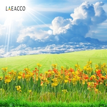 Laeacco Nature Scenic Backdrop Sunshine Flower Grass Photography Backgrounds Customized Photographic Backdrops For Photo Studio цена