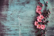 LIFE MAGIC BOX Vinyl Wood Flower Floor Background Photography Backdrop Beautiful Wallpapers