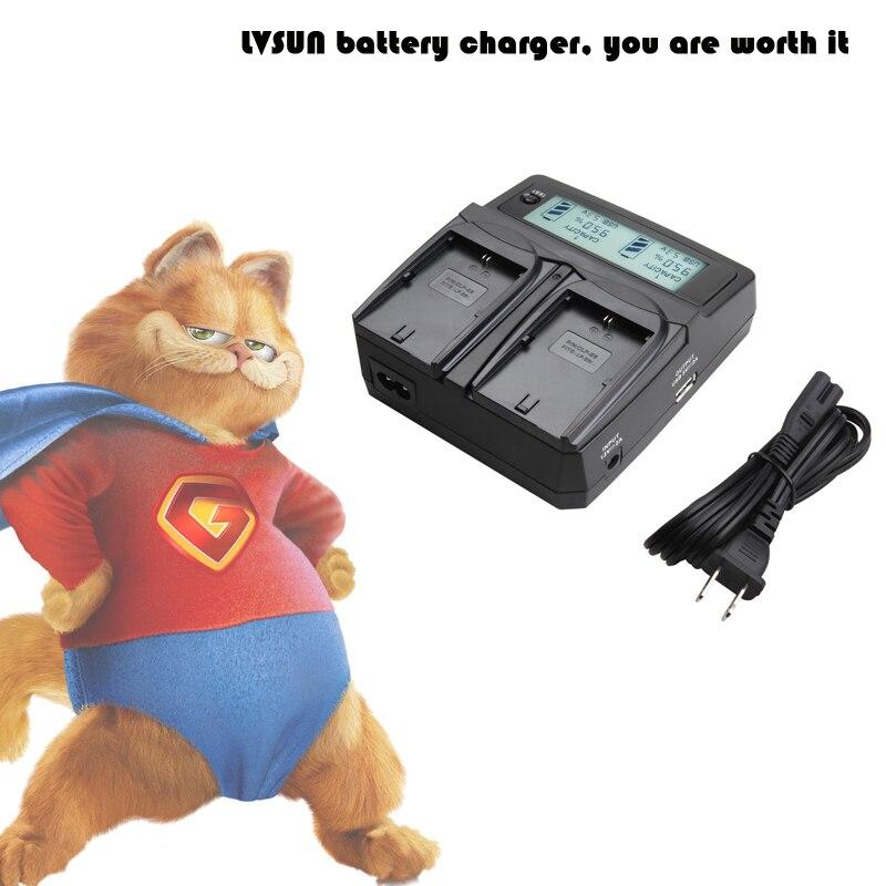 LVSUN Caméra Batterie NP-W126 NPW126 W126 Double Voiture/AC Chargeur Pour Fujifilm FUJI HS50 HS35 HS33 HS30EXR HS33EXR X-Pro1 X-E1X-E2