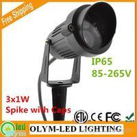 Lawn Lighting AC110V/220V 12V High Power Waterproof Outdoor Garden Spot Lamp LED Garden Spike Light Floodlight 3W IP65 4Pcs