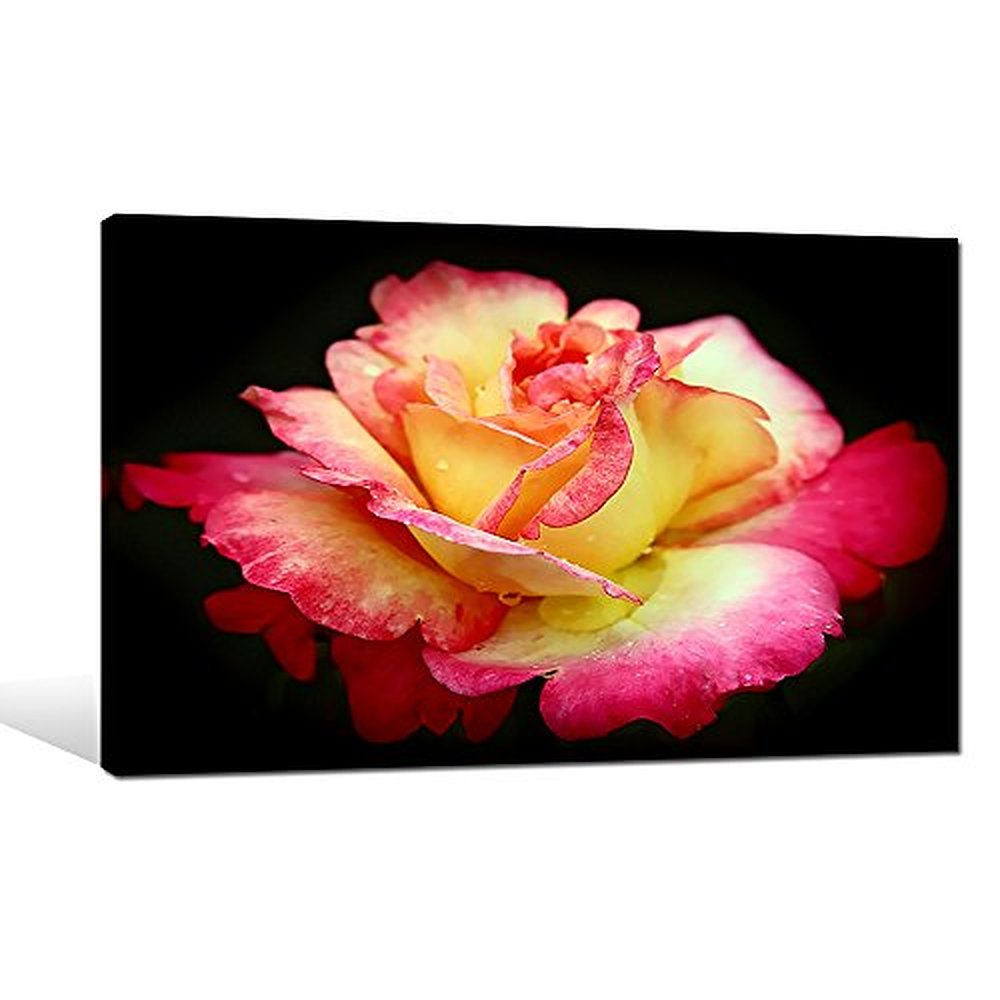 Photo Giclee Promotion-Shop for Promotional Photo Giclee on ...