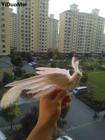 Artificial Bird About 20x28cm White Feathers Phoenix Bird Spreading Wings Handicraft Prop Garden Decoration Gift P1539
