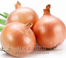 100 Onion Yellow Sweet Spanish Great Vegetable  Seeds, free shipping, hot sale