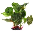 aquarium Plant decor...