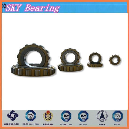 ФОТО NTN double row eccentric bearing 6102529YRX