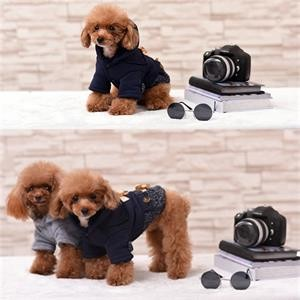 Free-shipping-2017-New-Chicdog-Dog-Clothes-Hooded-woollen-Dog-Coat-Autumn-Winter-Warm-Cotton-Costume (1)