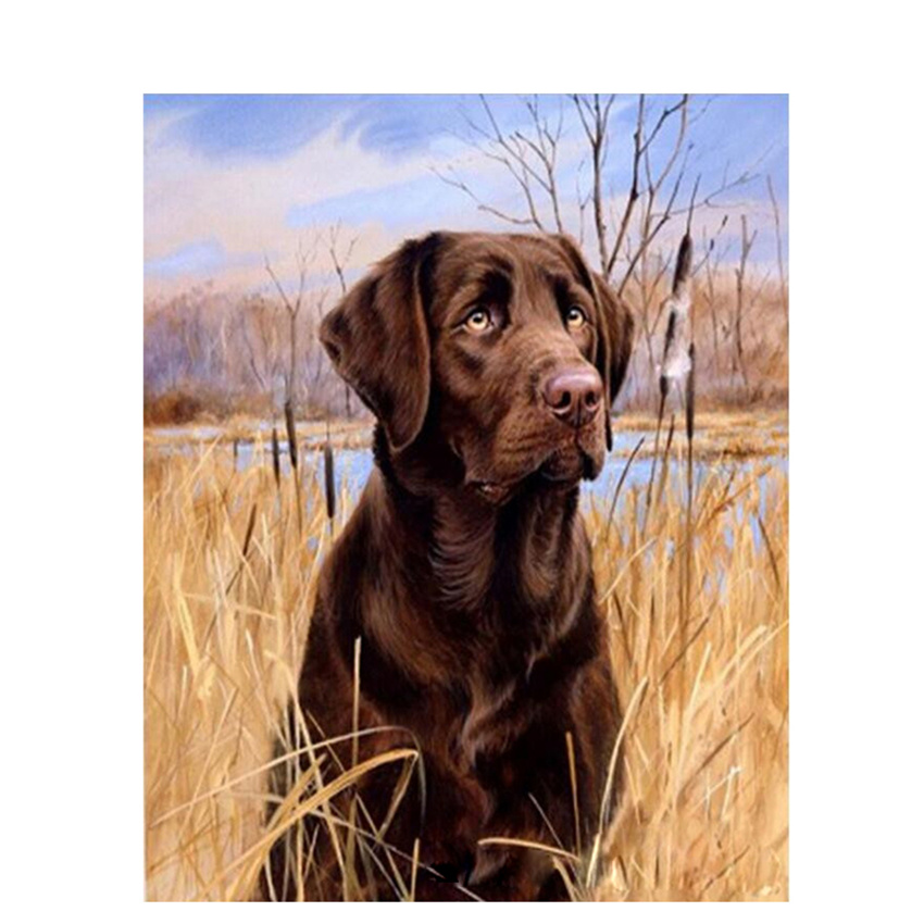 DIY Digital Painting By Numbers Package Labrador retriever oil painting mural Kits Coloring Wall Art Picture Gift frameless