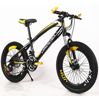 Hot Sale 2017 New 20 Inch Children Mountain Bike Outdoor Sport 21 Speed Two Disc Brakes
