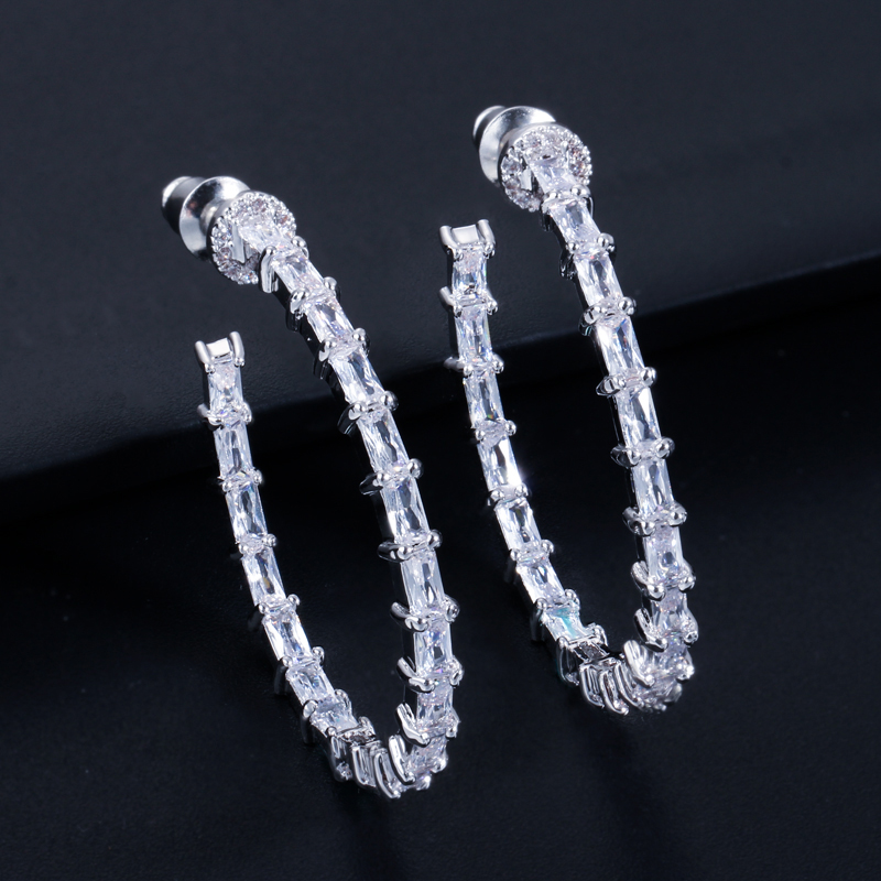Hook Earrings-AE224 -2