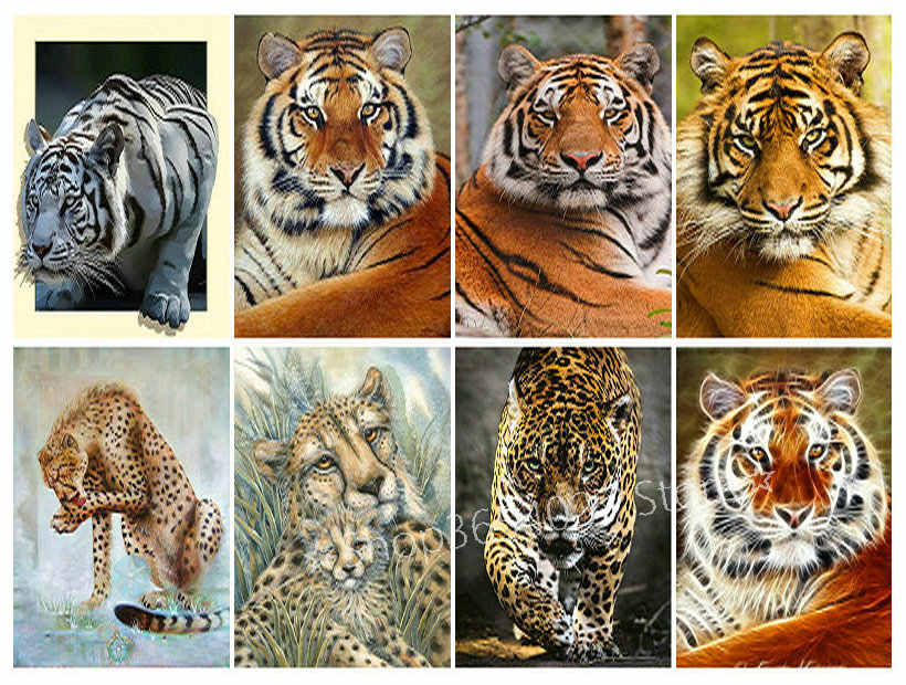 5d diy diamond painting tiger, lion, leopard full of diamond embroidery 3D  diamond mosaic home decoration kit animal pictures