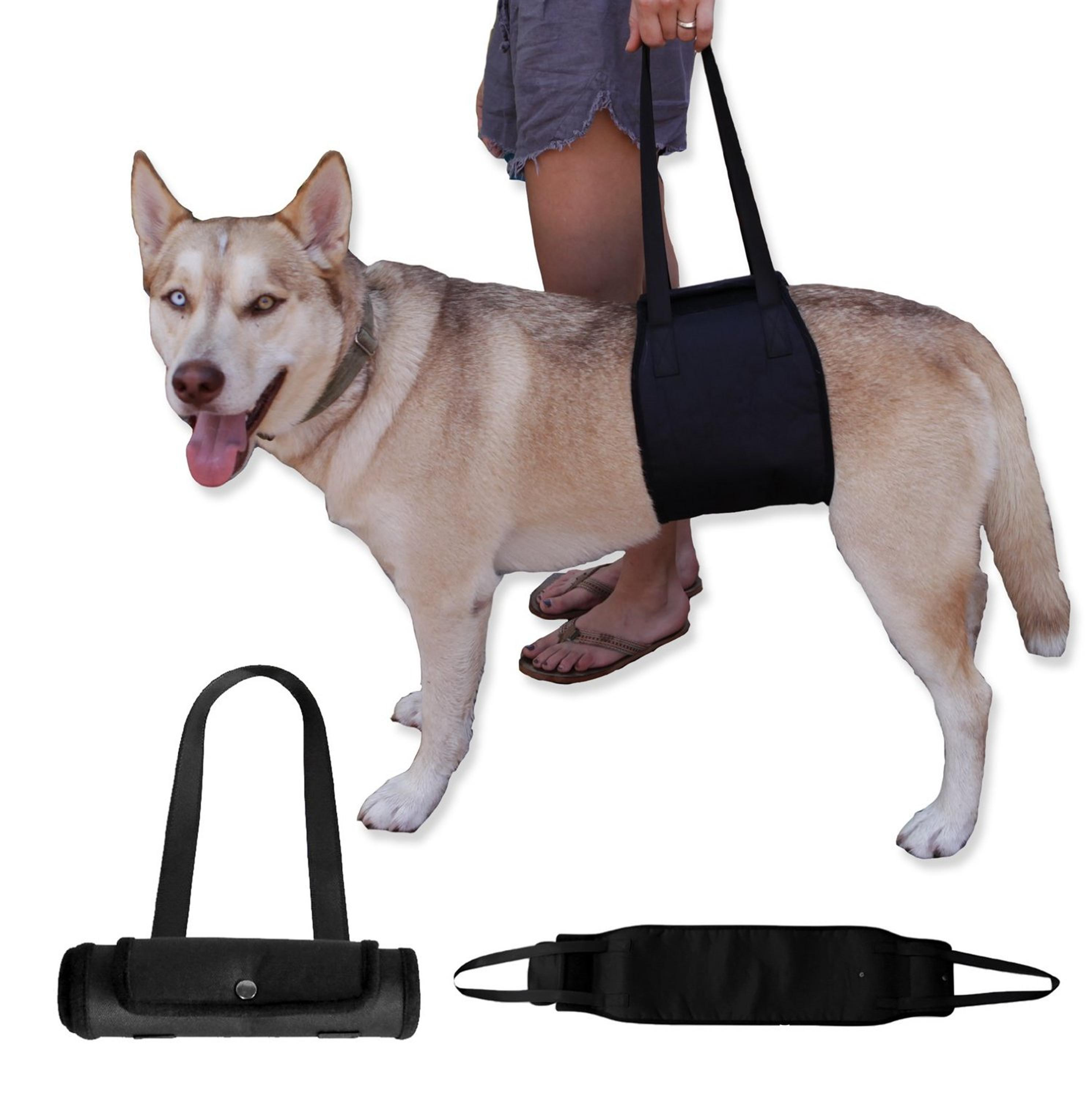 Large Up and Out Dog Lift Harness Support Rehabilitation With Handle
