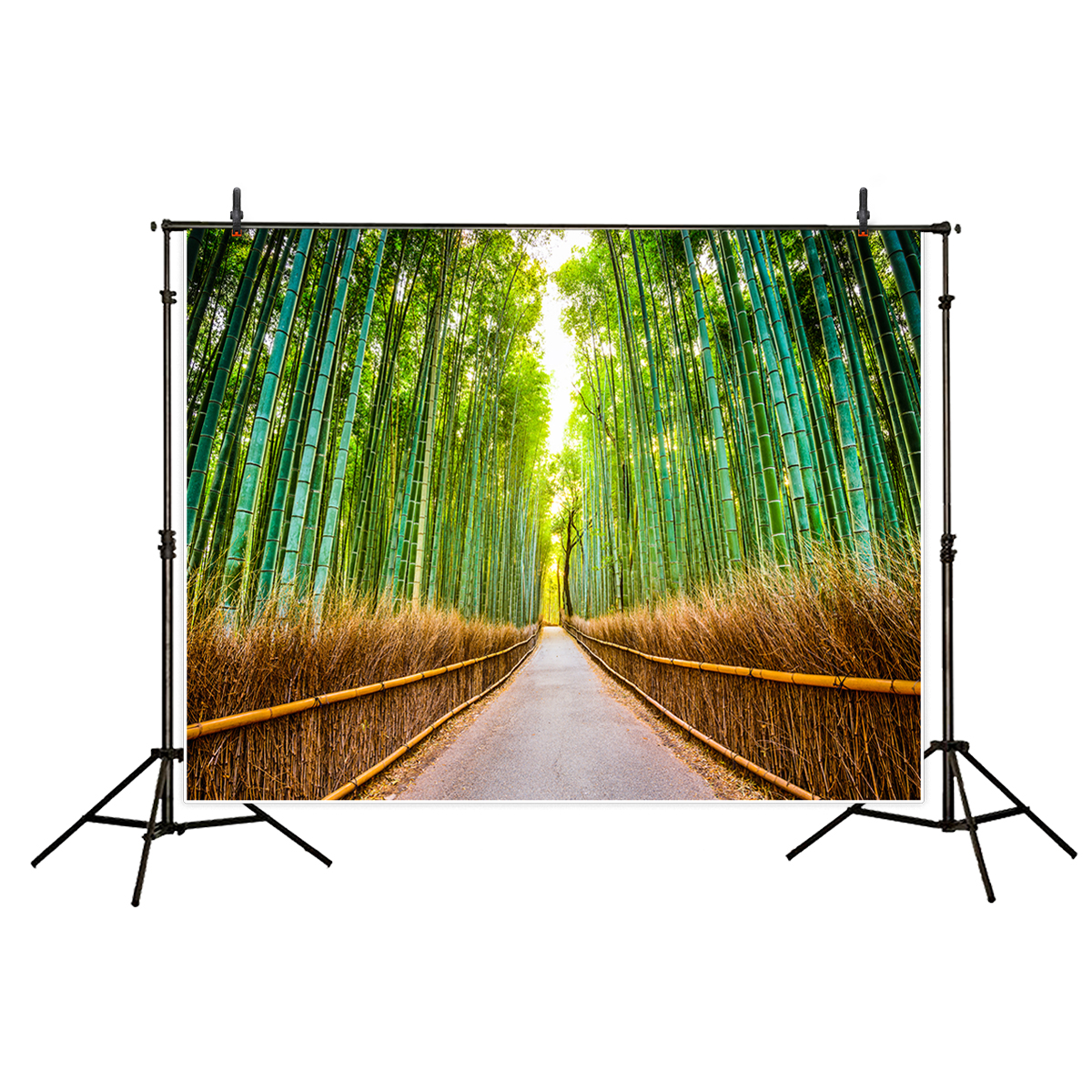 6x6FT Vinyl Wall Photography Backdrop,Panda,Bamboo Forest in Summertime Photo Backdrop Baby Newborn Photo Studio Props