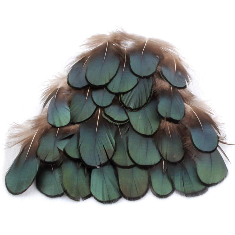 Wholesale 500 Pcs/lot DIY Peafowl Natural Peacock Blue Feathers Jewelry Hair Wedding Dress Accessories Peacock Feathers