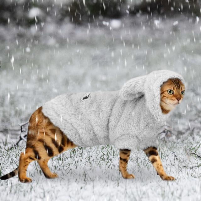 Sudadera Encapuchada de Algodón para los Gatos