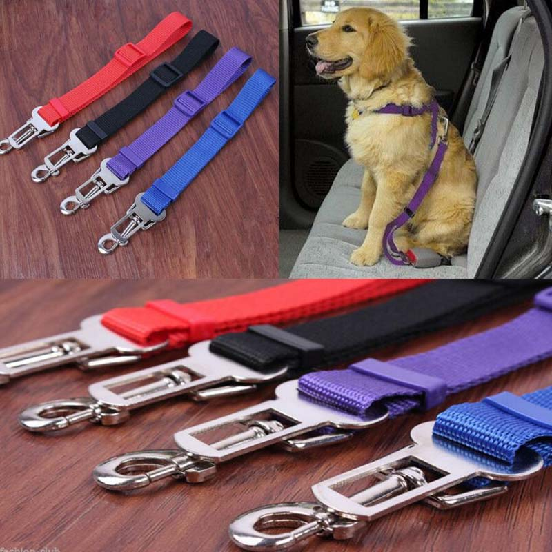 2016 fashion adjustable car seat belt for pet cat dog safety belt pet supplies leashes car. Black Bedroom Furniture Sets. Home Design Ideas