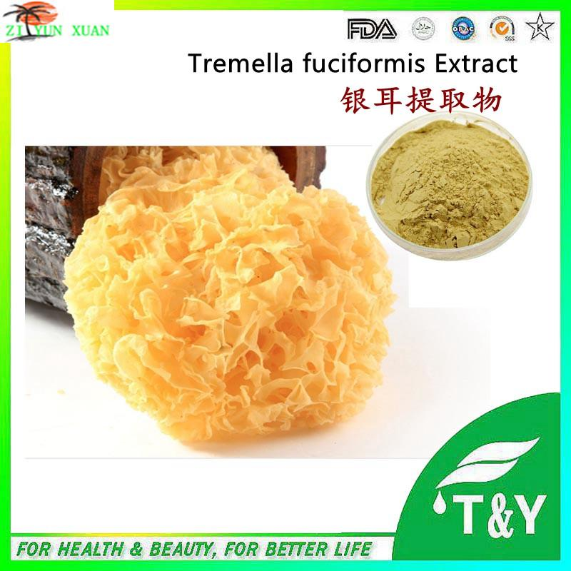 Hot sale 900g/lot Plant extract mushroom extract/Tremella fuciformis extract/Sporocarp extract with free shipping