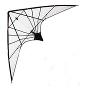 Professional Outdoor Fun Sports 1.8m Power Stunt Kite Entry Level For Beginner Good Flying