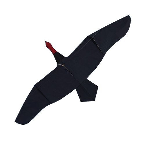 New Arrive Outdoor Fun Sports 3m Black Swan Kite / Animal Kites With Handle & Line Good Flying