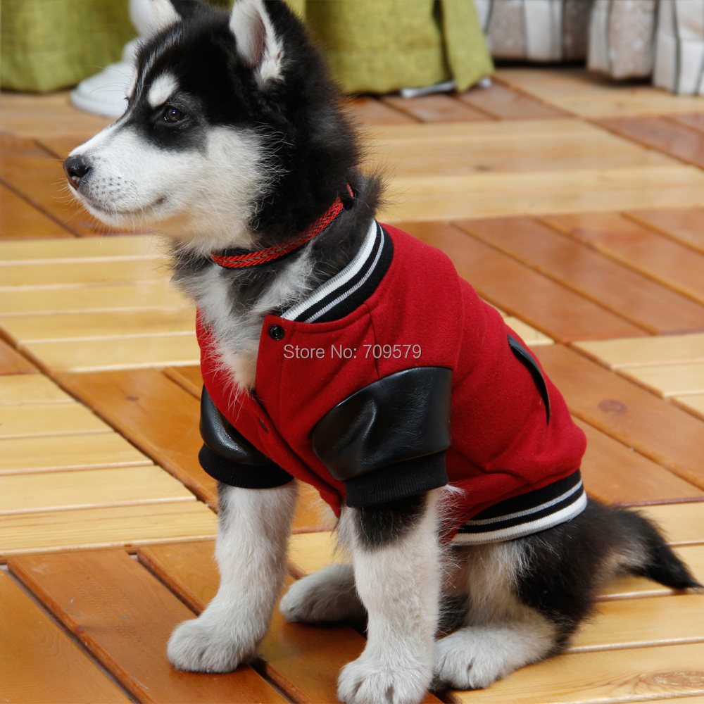 Hoodies for puppies