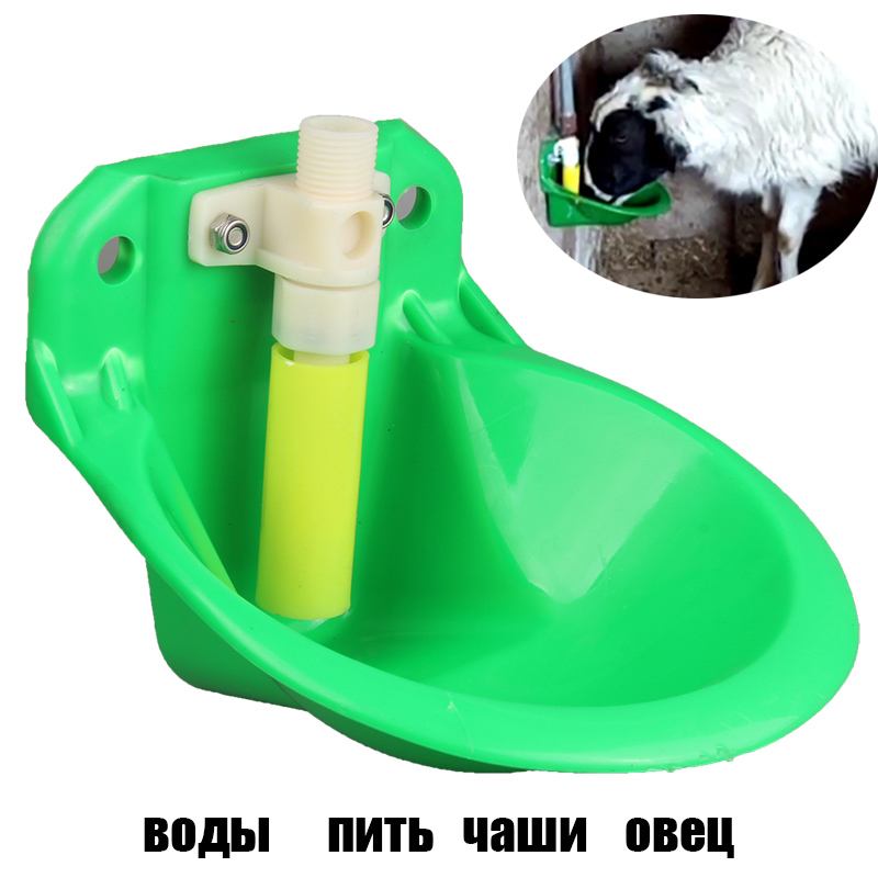 best sheep feeding list and get free shipping - 2b660bi7
