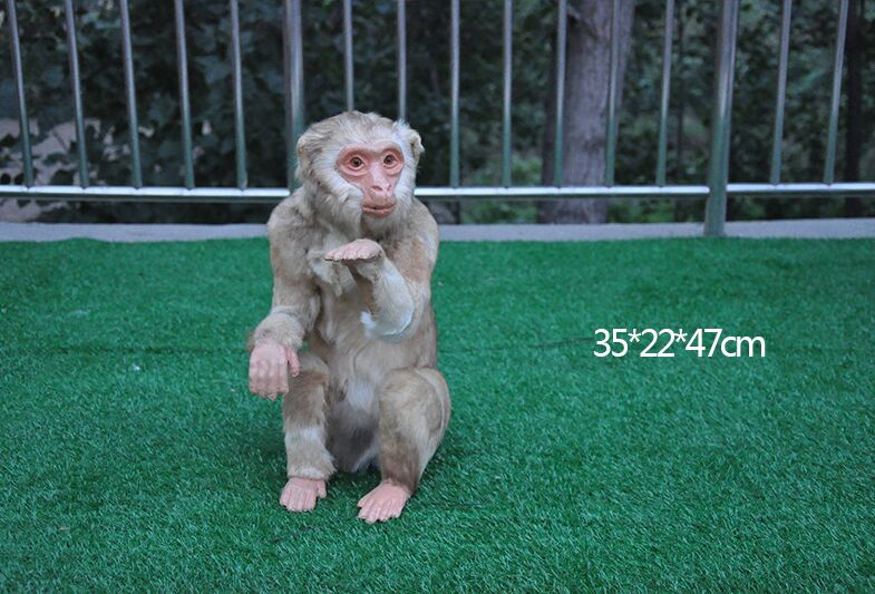 large 35x22x47cm simulation monkey polyethylene furs monkey model prop handicraft garden decoration gift b2630