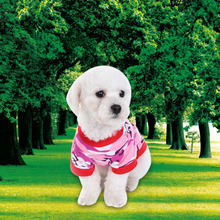 Camouflage Clothes for small dog