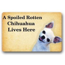 Entrance Floor Mat Non-slip Doormat A Spoiled Rotten Chihuahua Lives Here Rubber Non-woven Fabric Top 18 x 30 Inch