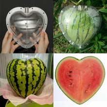 Cucumber Watermelon  Fruits Growth growing Forming Mold  Star Heart-shaped Plastic Transparent  For Garden Bonsai