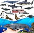12 pcs 3D Sea Life Tubarões Golfinhos Simulação Modelo Animal Engraçado Brinquedos de aprendizagem educação brinquedos Caçoa o Presente