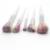 5 unids Belleza Chica de Maquillaje Profesional Fundación Espiral Mango Del Cepillo de Cejas Eyeliner Cosmético Rubor En Polvo Corrector Brushes Set
