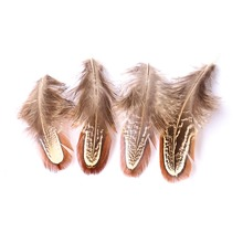 Boutique 30 Pieces Chicken Feather Natural 3-6CM Wedding Dress DIY Jewelry Accessories Fluffy Valentines Day Decoration