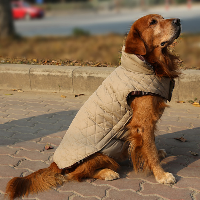 Windproof Reversible Golden Retriever Large Big Dog Apparel Clothes Warm and Windproof Coat Jacket Size XS S M L XL XXL XXXL