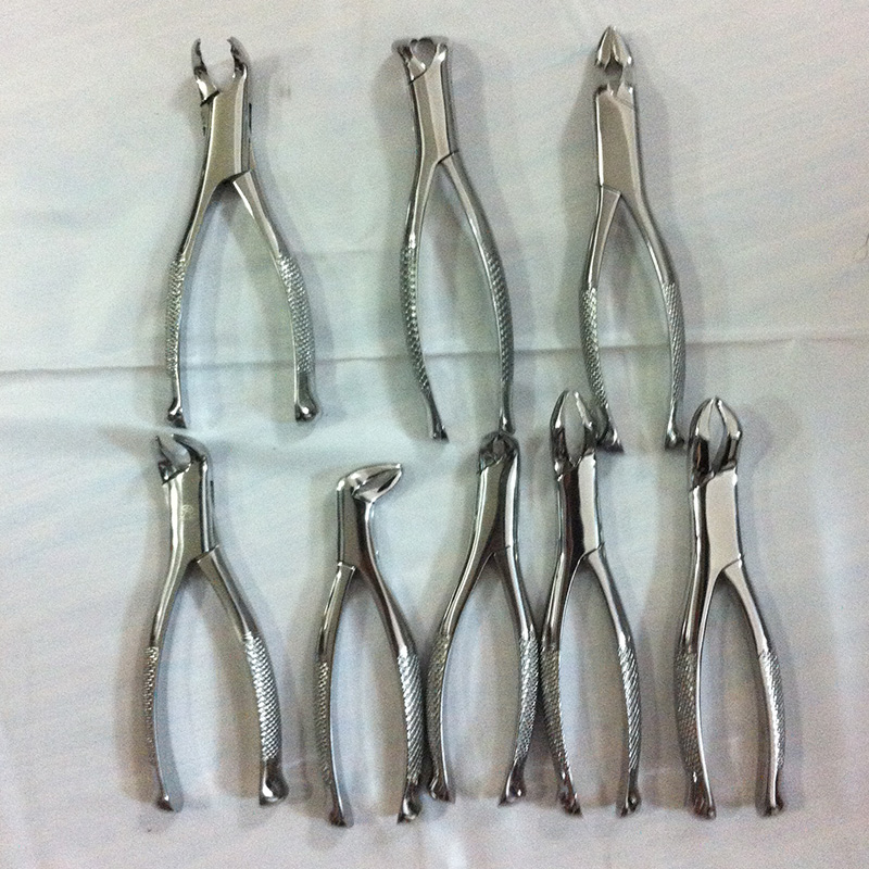 1pc Children Tooth Extraction Forceps Dental forceps designed for removal of primary teeth transparent dental orthodontic mallocclusion model with brackets archwire buccal tube tooth extraction for patient communication